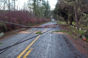 downed-power-lines